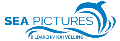 SEA PICTURES - Bildarchiv Kai Velling